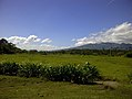 Mounts Banahaw–San Cristobal Protected Landscape.jpg