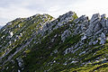 Mt.Utsugidake 05.jpg