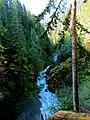 Mt. Baker-Snoqualmie National Forest (9292811206).jpg