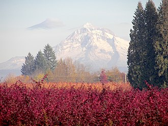Boring, Oregon - View of Mount Hood from Boring