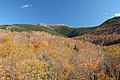 Mt. Lafayette from Recreational Trail, Franconia (494035) (11865626145).jpg
