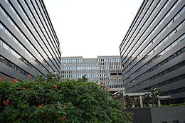 Mindtree - Wikipedia