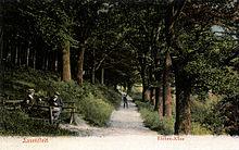 Die von Rudorff vor der Abholzung gerettete Eichen-Allee hinter der Knabenburg im Weserbergland; kolorierte Ansichtskarte um 1900 (Quelle: Wikimedia)
