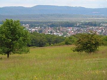 NSG Magerrasen am Eulenkopf,Magerrasen und Sickinger Höhe.jpg