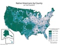 Native American population per county.pdf