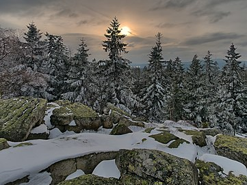 Naturschutzgebiet Plattengipfel.jpg
