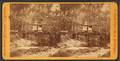 Near the Wissahickon. (View of a wooden bridge), by Cremer, James, 1821-1893.png