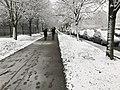 Neige Avenue Pascal Champs Marne 1.jpg
