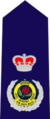 New South Wales State Emergency Service insignia - Deputy Commissioner.png