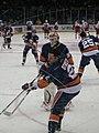 New York Islanders vs. Carolina Hurricanes - February 6, 2010 (4339304134).jpg