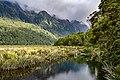New Zealand NZ7 2910.jpg