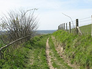 Pilgrims' Way - Near Thornham Castle, Kent