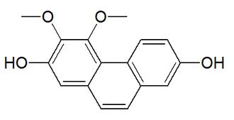 Nudol - Image: Nudol