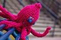 Octopus (3028038447).jpg