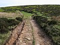 Offa's Dyke Path - geograph.org.uk - 817753.jpg