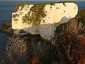 Old Harry Rocks - geograph.org.uk - 1052355.jpg