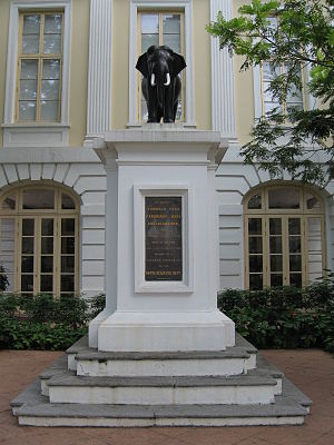 Old Parliament House, Singapore - The bronze elephant statue at the Old Parliament House.