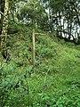 Old footpath sign - geograph.org.uk - 1443529.jpg