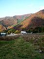 Omosiroyama 2005 Cosmos Berg.jpg
