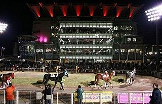 Ohi Racecourse