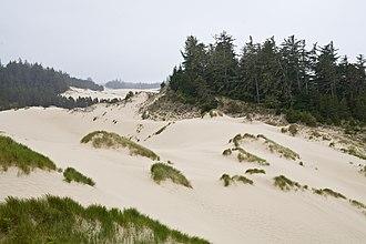 Florence, Oregon - The Oregon Dunes National Recreation Area near Florence