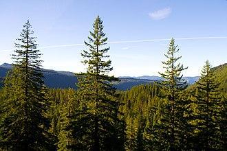 Oregon Route 242 - Image: Oregon Route 242 Scenic Vista