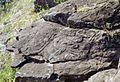Orongo - Easter Island (3844717971).jpg