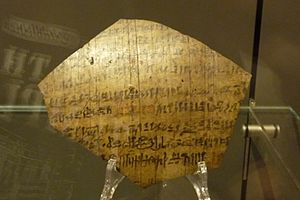 Khonsuemheb and the ghost - Turing fragment of the story. Museo Egizio, S.6619