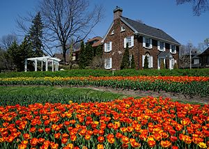 Canadian Tulip Festival - Tulips at Dows Lake in 2014