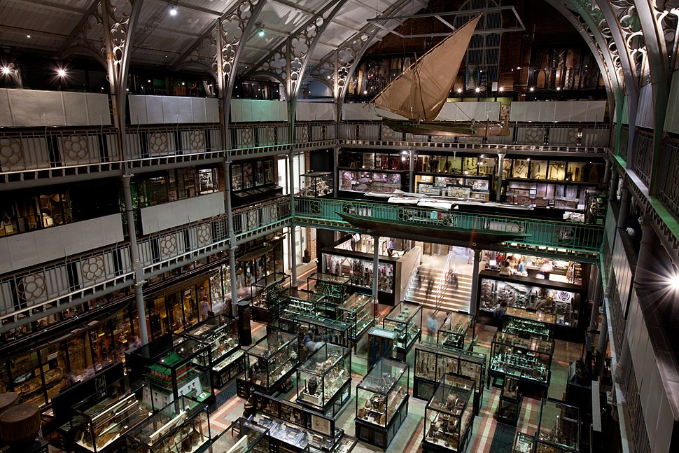 Oxford - Pitt Rivers Museum - 0269