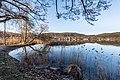 Pörtschach Halbinselpromenade Weiden und Erlen 16032018 2706.jpg