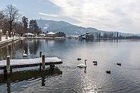 Pörtschach Johannes-Brahms-Promenade Wasservögel Promenadenbad 02032018 2680.jpg