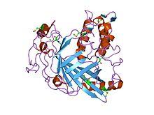 PDB 1vpr EBI.jpg