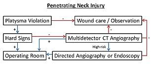 Gunshot wound - Wikipedia