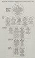 PTT-Archiv Vers-033 A 0055 Systematik des Aufbaus der Schweizerischen Landesausstellung 1939.tif