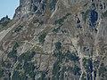 Pacific Crest Trail 26541.JPG