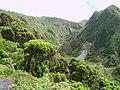 Paisagem entre Caldeiras e Lombadas - Ribeira Grande (59347872).jpg