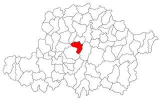 Pâncota,  Arad, Румыния