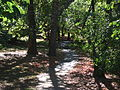 Park in Bronxville, New York.jpg