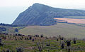 Peak Hill, near Sidmouth - geograph.org.uk - 66847.jpg