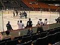 Penguins practice (7605886532).jpg