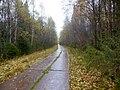 Permskiy r-n, Permskiy kray, Russia - panoramio (730).jpg