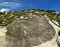 Petroglifos da Gurita I - Baroña - Porto do Son - A Coruña.jpg
