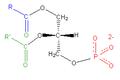 Phosphatidate2.png