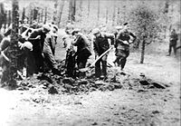 Piaśnica digging of the graves
