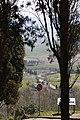 Pienza MG 0790 05.jpg