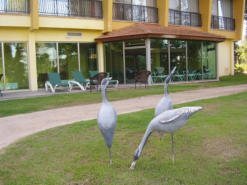 מלון אסיינדה במעלות