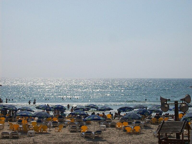 """חוף פרישמן ת""""א"""
