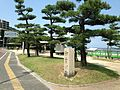 Pine trees and stele of Mimosusogawa in Mimosusogawa Park.JPG