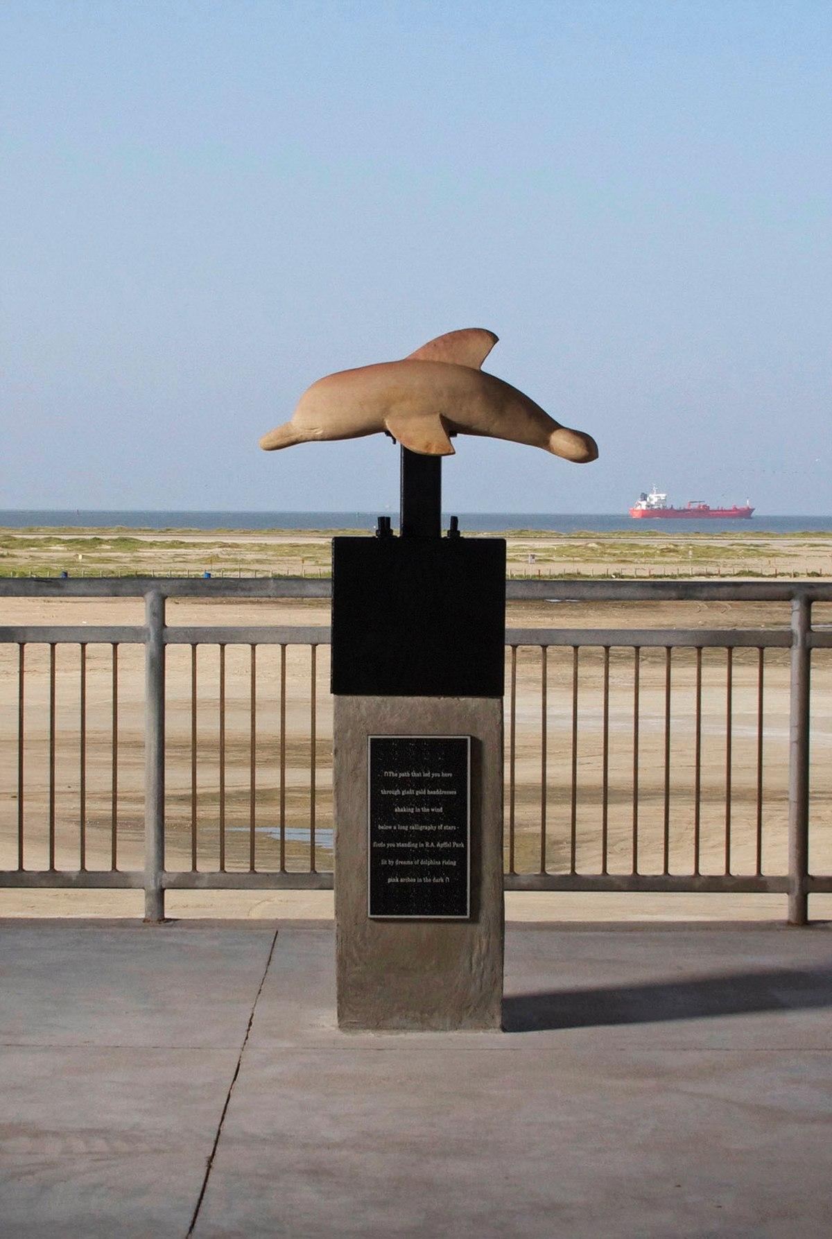 Dolphin Island Park Vs Dolphin Discovery Punta Cana
